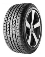 Автошина GT RADIAL Champiro WT-AX 185/55 R14 80 H Зима